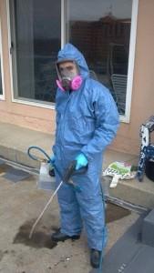 Mold Restoration Technician