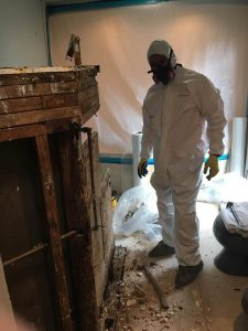 Mold Removal and Water Restoration Services After a House Flood