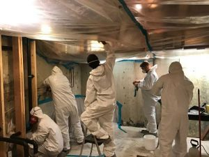 Our Technicians Conducting Water Damage and Mold Remediation in a Flooded Basement
