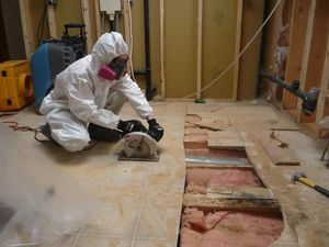 A Technician Conducting Water Damage and Mold Removal Services